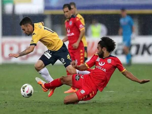 du-doan-bong-da-adelaide-united-vs-central-coast-15h05-ngay-19-2